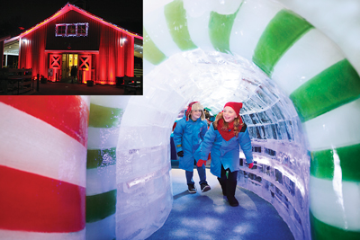 Zoo Lights at the National Zoo features a variety of special displays for families. Plus, many of the animal habitats get the holiday treatment (inset). ICE! at the Gaylord is another kid-pleasing attraction.