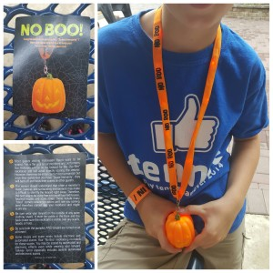 Pick up a No Boo! lanyard at Kings Dominion if you you're visiting in the evening and don't want to surprised.