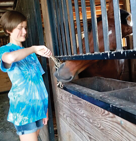 While staying at Country Lane Farm in Pennsylvania Dutch Country, the girls visited T.J.'s stall several times a day to feed him hay and apples. A thank you for that buggy ride earlier!